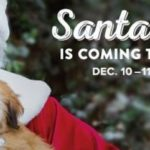 PetSmart ~ FREE Pet Photos With Santa December 10th & 11th